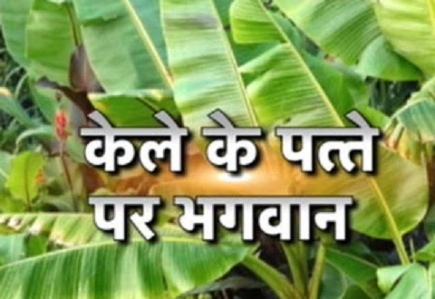 Astro Benefits of Banana Leaf - Astro Upay