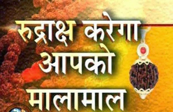 Benefits and Rules to Wear Rudraksh - Astro Uncle