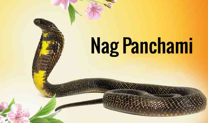 Fear Of Snakes Astrology